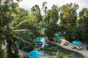 The pool is practically embedded in the jungle